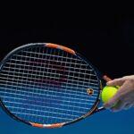 Antivibrador de tenis