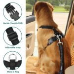 Arneses cinturon de seguridad para perros