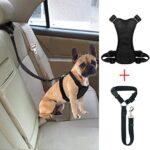 Cinturones seguridad perro