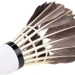 Volantes pluma ganso de badminton