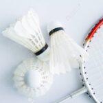 Accesorios de badminton