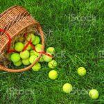Pelotas cesta pelotas de tenis